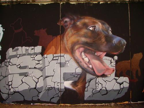 Graffiti perro - Imagui