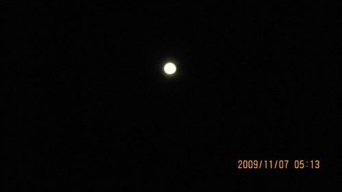 Kiwi0821 拍攝的 2009年花蓮太魯閣馬拉松 (290)。