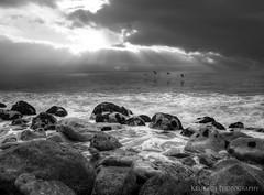 follow me (Kris Kros) Tags: ocean california sun seascape bird beach photoshop photography high rocks dynamic pacific wave pch kris rays range hdr kkg cs4 photomatix kros kriskros 5xp kkgallery