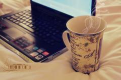 (- M7D . S h R a T y) Tags: lighting coffee random laptop smoke goodmorning cupoftea sonyvaio softlighting sonystyle wordbyme ®allrightsreserved™ صـبـــاحالخـيـــر