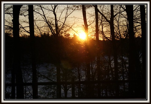 sunset over walden pond