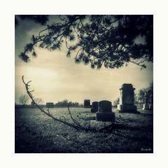 A Rural Cemetery (JourneysEnd1750) Tags: kodak duaflex 120film film analogue mediumformat cemetery fujifilm acros100 mercercounty vintagecameras 120filmcameras