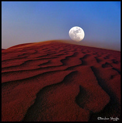I was just talkin to the moon  ! (Bashar Shglila) Tags: world moon texture sahara night photography gallery desert photos top best most worlds sands popular libya wadi sabia lybia libia potofgold libye  libyen      lbia libi libiya alhaya awbari liviya   libija theunforgettablepictures  platinumheartaward   flickrlovers      lbija  lby libja lbya liiba livi   mygearandmepremium mygearandmebronze mygearandmesilver