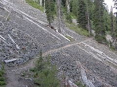 Clearing/avalanche area not far past creek crossing on Crystal Peak trail.