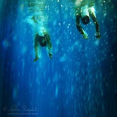 brave new world () Tags: portrait sun seascape guy andy pool girl underwater upsidedown action andrea dive andrew piscina uomo bikini splash sole francesco margherita tuffo ragazza ragazzo lightray raggiodiluce benedetti sottacqua sottosopra  canonwpdc17underwaterhousingforcanonsd870isdigital