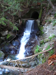 Man-made waterfall pouring out from beneath the old roadbed at 1750 ft