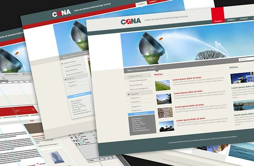 Re-diseño sitio web CGNA