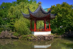 The Dr. Sun Yat-Sen Classical Chinese Garden (Explored) (Brandon Godfrey) Tags: pictures trees canada reflection water vancouver pagoda photo amazing fantastic pond rocks chinatown bc shot photos shots pics britishcolumbia sony picture images creativecommons pacificnorthwest northamerica alpha dslr hdr highdynamicrange outstanding a300 singlerawfilehdr dslra300 sonya300 murcky thedrsunyatsenclassicalchinesegarden