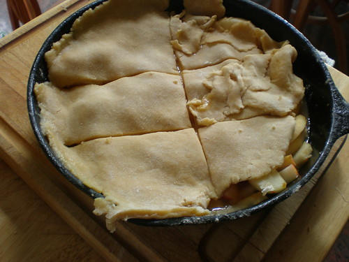 The rolled dough on top of the apples, holes rustically patched with scraps