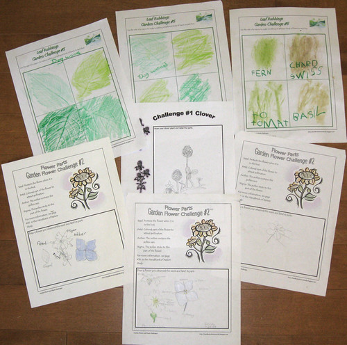 Garden Flowers Notebook Pages