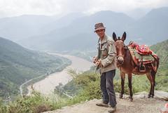 El arriero va (GMH) Tags: china viaje animal fauna trekking asia