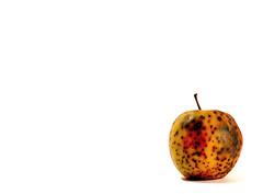 (Olio | www.rmpics.it) Tags: food apple canon rotten rottenapple rottenfood canoneos450d canoneos450ditalia