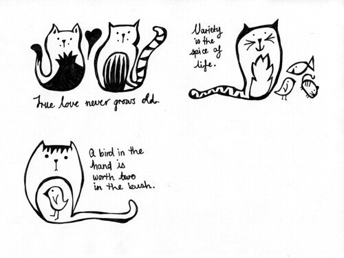 cat-proverbs