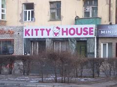 KITTY...?