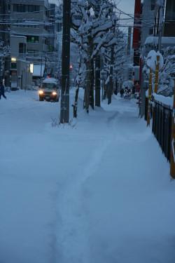 雪 (10).JPG