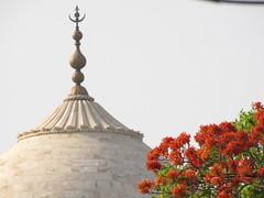 20110423_Taj_Mahal_044