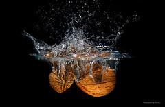 Splash - Walnuss - Walnut (Pana53) Tags: photographedbypana53 pana53 splash fotografie workshop wasser blitzen blitzlicht spritzer gegenstände hintergrund schwarzerhintergrund nikon nikond500 walnut