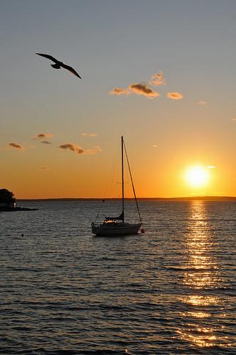 ocean canada sailboat bay nikon novascotia seagull free atlantic dennis d300 iamcanadian frenchvillage dennisjarvis archer10 dennisgjarvis