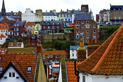 whitby roofs (chrisbarber1610) Tags: yorkshire roofs whitby