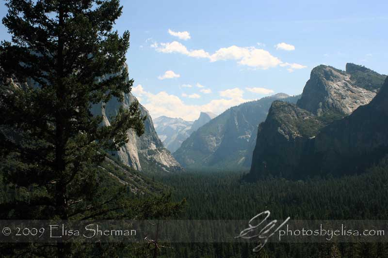Yosemite by Elisa Sherman