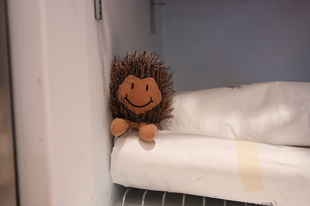 hedgehogFREEZER