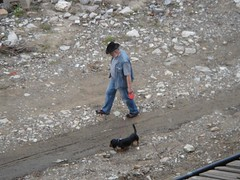 牛仔阿伯與他的小臘腸狗