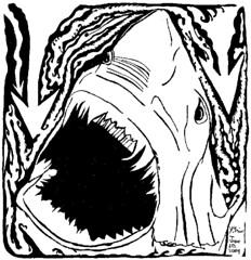 shark maze open jaws