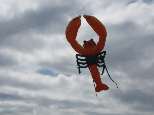 Lobster Kite