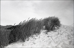 Basic Space (katja b.) Tags: leica bw landscape dune northsea analogue rodinal sylt apx 38mm
