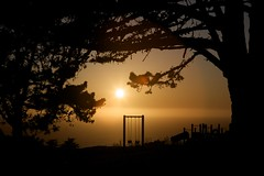 Presidio Playground at Sunset (Andrew R. Whalley) Tags: ocean trees sunset mist silhouette playground golden gate san francisco pacific branches swings lensflare area presidio recration