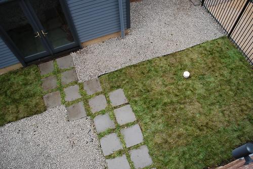 backyard (by ann-dabney)