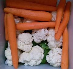Turija (in progress) (sovica_xxx) Tags: winter colors vegetables salad colours carrot cauliflower pickled celery 2009 greentomatoes karfiol celer sovica argarepa zeleniparadajz turija