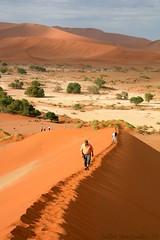 Sossusvlei (EnDie1) Tags: africa dunes namibia dünen sossusvlei südwest endie1 sterndünen