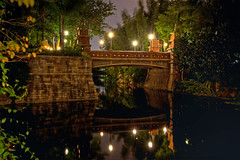 Animal Kingdom - Bridge to Discovery Island (Todd Hurley (Todd_H)) Tags: longexposure nightphotography bridge reflection water animal canon photography amusement lowlight asia florida disneyworld mickeymouse 5d wdw waltdisneyworld walt hdr themepark animalkingdom disneysanimalkingdom waltdisney wdi imagineering baylake waltdisneyworldresort wedenterprises 5dmkii 5dm2 5dmark2 thhphotography toddhurley