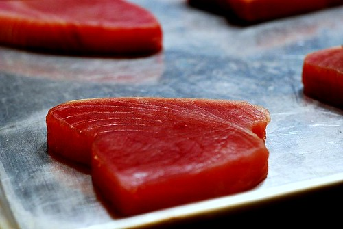 Raw Tuna steaks, ready to add spice rub and sear