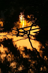 Late reflections (Fly bye!) Tags: sunset pond mere marbury bigmere