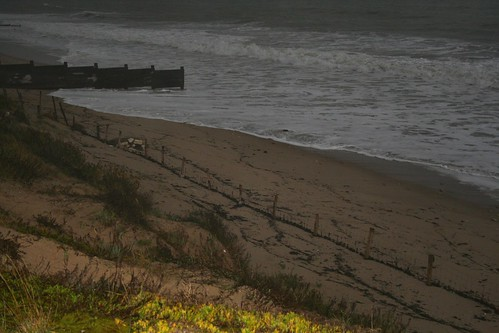 2009 Ile de Ré nov-dec 2009 071