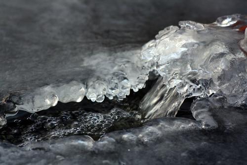 Is på dammen