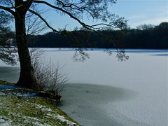 Harewood Lake (P. Stubbs photo) Tags: gardens stupa steppingstones icehouse scenes harewoodhouse harewood thedell thebothy himalayangarden harewoodcastle harewoodchurch