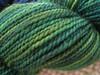 pine over gold (TheGirlCantHelpKnit) Tags: sock yarn sundara handdye