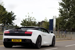 Black & White. (Alex Penfold) Tags: auto camera white black cars alex sports car sport mobile canon photography eos photo cool flickr colore image awesome flash fsu picture super spot exotic photograph silverstone spotted hyper lamborghini bi supercar fia spotting numberplate exotica gallardo sportscar sportscars supercars lambo penfold spotter 2011 gt1 coloure hypercar rx11 60d hypercars lp560 alexpenfold bicoloure rx11fsu