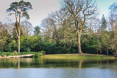 Claremont Lake (Jicardee29) Tags: trees lake water gardens reflections spring views nationaltrust claremontlandscapegardens brokenclouds canon60d
