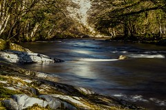 Tranquility on the moors part 2 (Tyrone Norah) Tags: photographylife 7d canon riverdart river stream tranquil countryside environmentalist nature nationalpark dartmoor