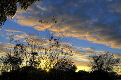 HDR Sunrise #14 (like jazz) Tags: winter sky sunrise nikon australia brisbane queensland f11 18mm d90 27713 hdr3exp 1685mmlens