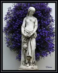 Lady Lobelia (EdwinaFran) Tags: summer garden ornament lobelia englishgarden gardenstatue skulpture royalblue digitalcameraclub mywinners 100commentgroup saariysqualitypictures edwinafran