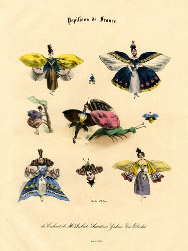 Papillons de France