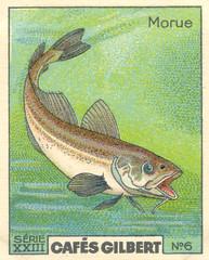 gilbert poissons 6