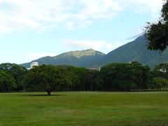 Parque Del Este, Caracas (Don Perucho) Tags: parque trees verde montagne arboles venezuela caracas miranda montaas parquedeleste guarairarepano verdor parquemiranda