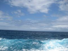 IMG_0238 (lharding803) Tags: northwest maui blowhole shore