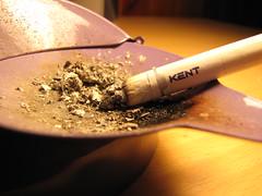 Vicio (CronosCross) Tags: macro kent cigar cigarro vicio cigarrillo filtro
